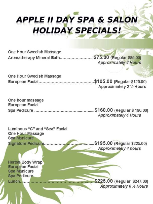 Holiday Special 2015 Website JPEG